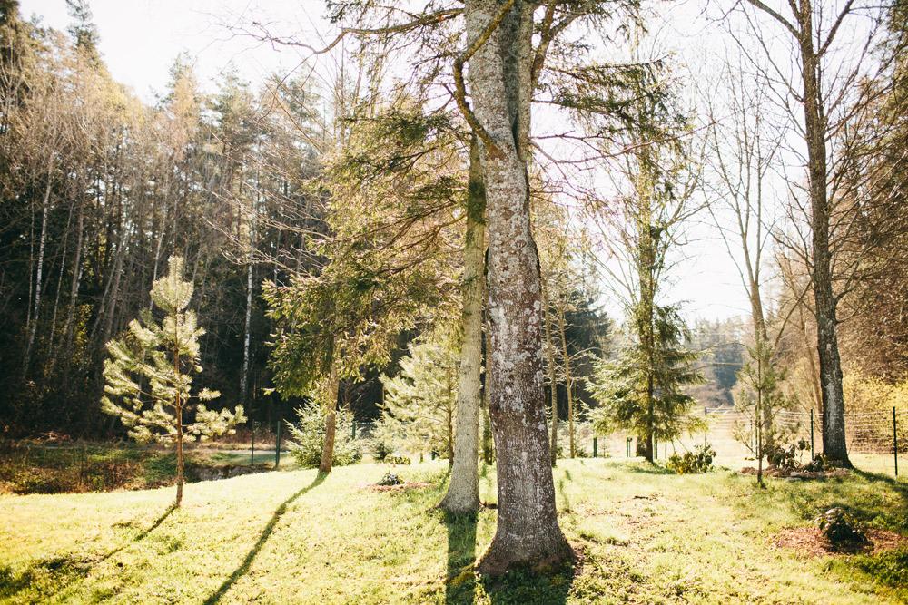 08-Pavasaris-kazas-holdme-lv-00008