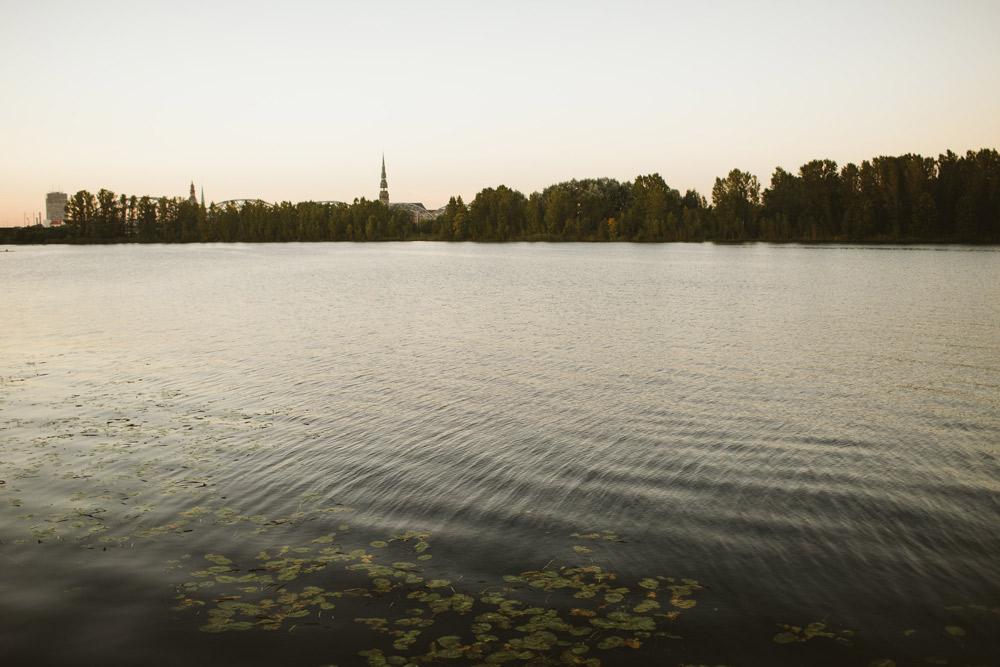 119-Kazu-Svinibas-Riga-holdme-lv