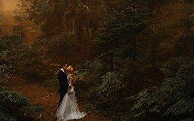 Kāzu meža noslēpums // Vienas bildes stāsts