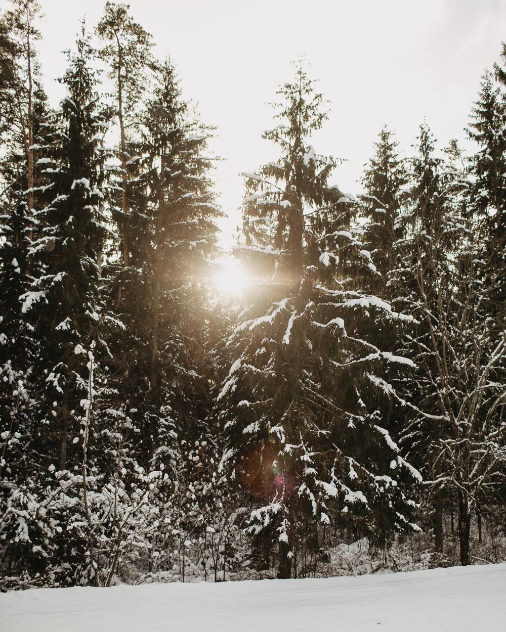 Latvijas foto ziema