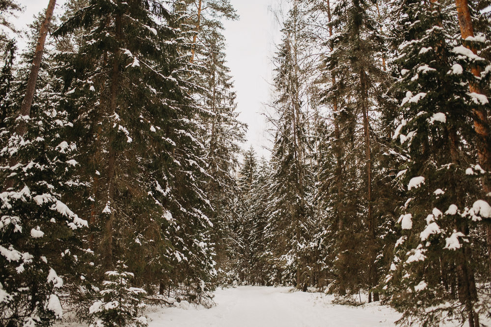 Latvijas fotosesijas ziemā